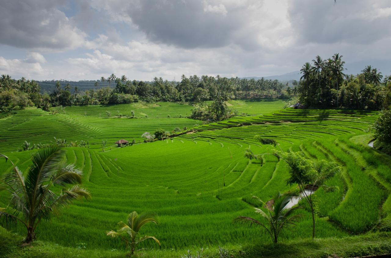 Rejser til Vietnam skaber minder for livet – Miniguide til østens perle